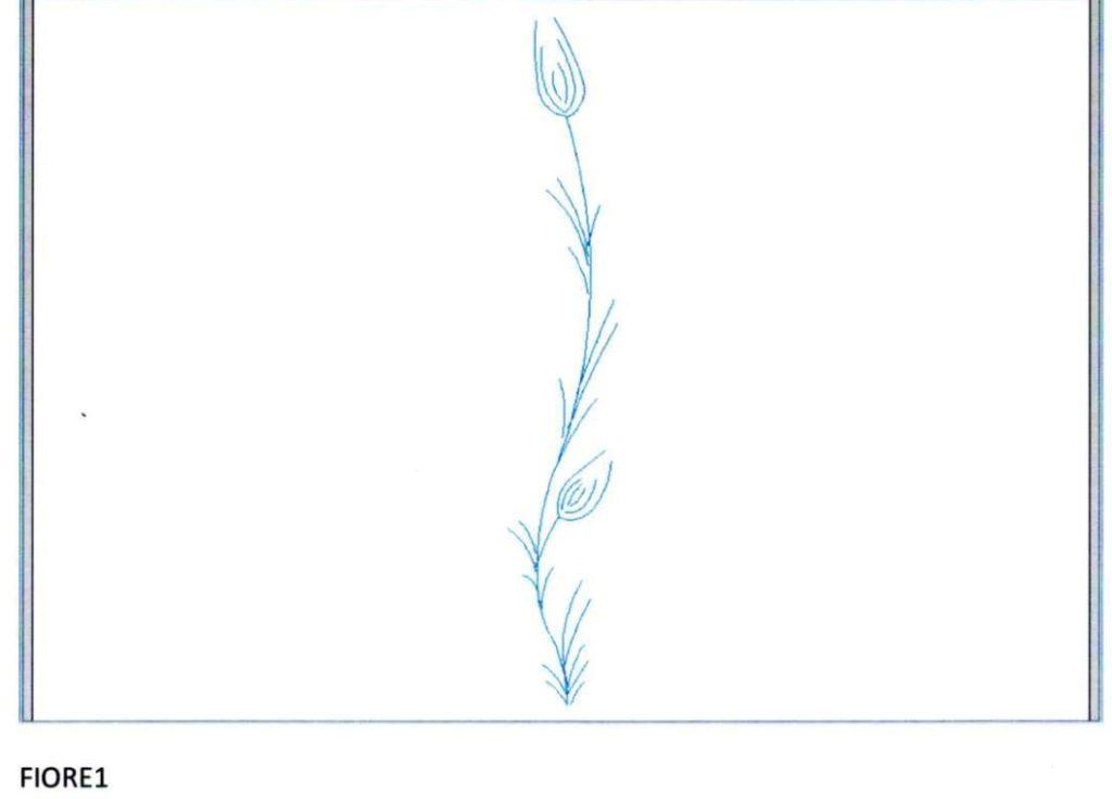gravura fiore1